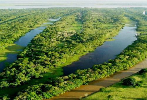 京津风沙源治理工程20年完成营造林超900万公顷